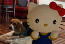 Hello Kitty búsquedas AR